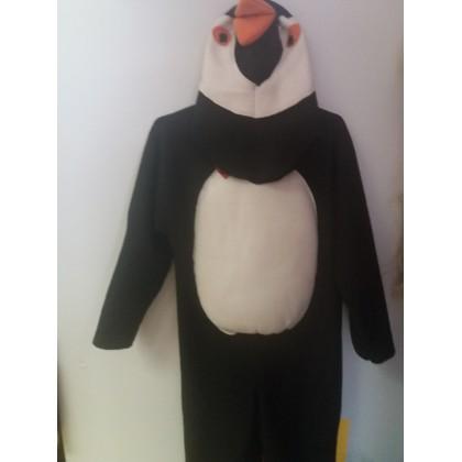 Pingvinas G 29 nuoma